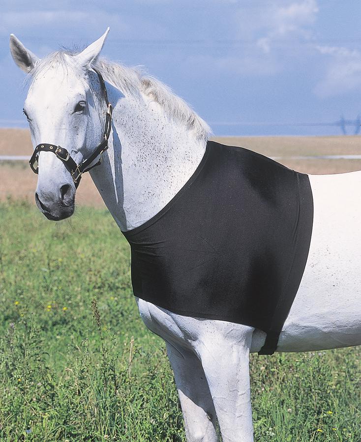 Decken reparaturset pferd